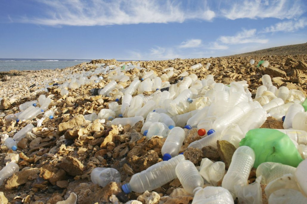 Plastic bottles on our beaches